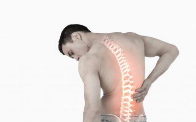 Det gode råd: Bevæg dig nu og undgå rygsmerter i morgen
